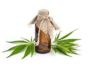 zeCBD.com: η τοποθεσία αναφοράς για την CBD / Cannabidiol (νόμιμη κάνναβη χωρίς THC) 1