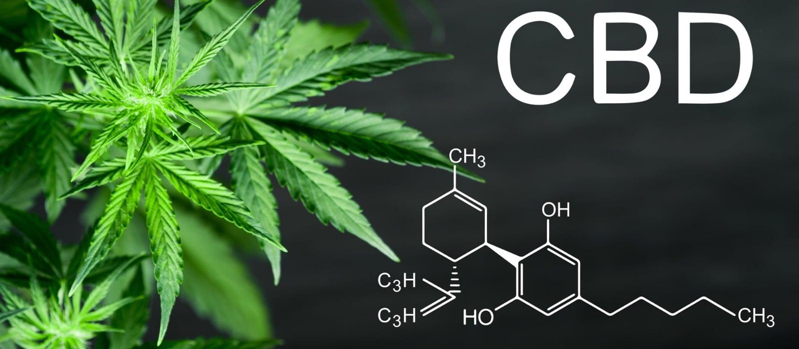 Was ist mit den therapeutischen und medizinischen Vorteilen von CBD?