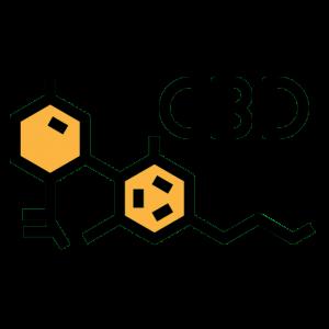 Endocannabinoïde systeem & homeostase: we leggen het je uit! 2