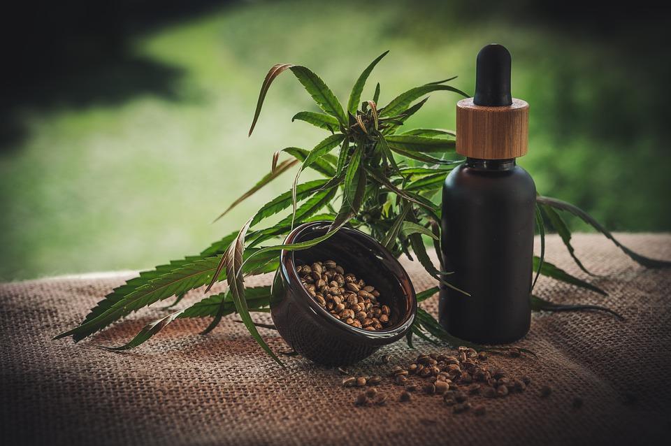 Endocannabinoidsystem & Homöostase: Wir erklären!