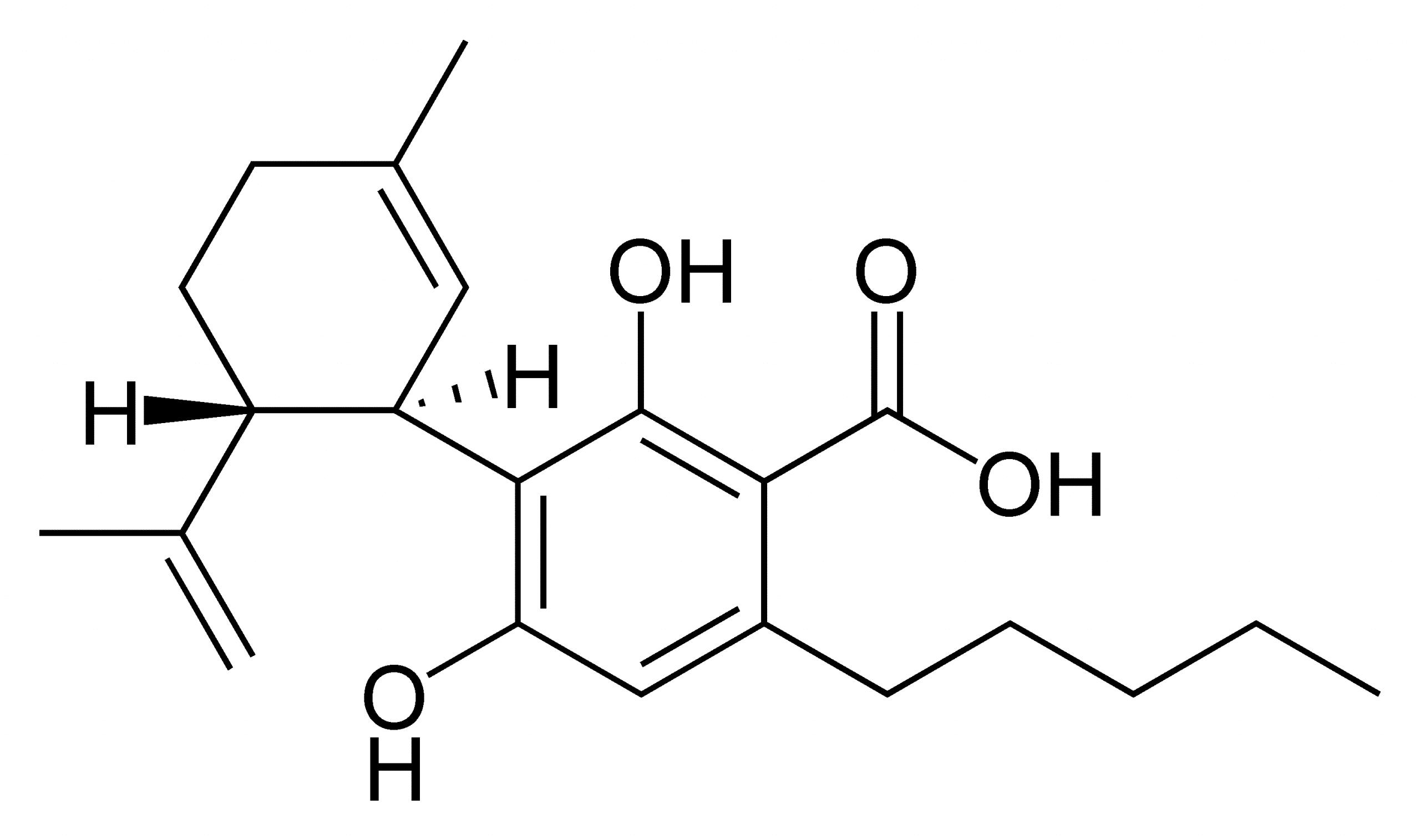 CBD vd. CBDa: Was sind die Unterschiede zwischen diesen Molekülen?