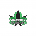 SHAMROCK CANNABIS